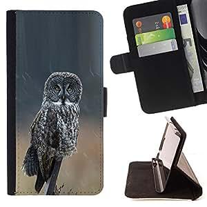 - owl grey ornithology wings nature summer - - Prima caja de la PU billetera de cuero con ranuras para tarjetas, efectivo desmontable correa para l Funny HouseFOR HTC One M9