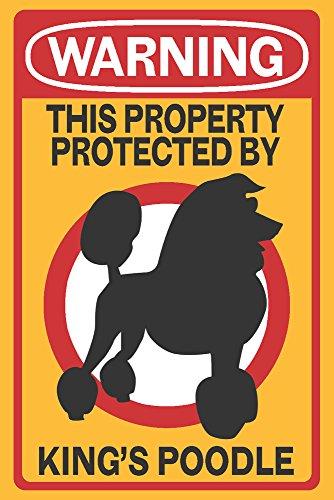 King's Poodle – Warning 512Kc6vX4uL