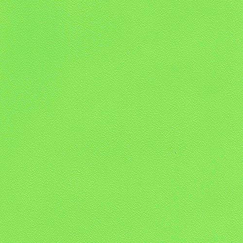 シンコール  壁紙48m  ビニル  黄緑色  SW-2487 B075BJ86WG 48m|黄緑色2