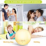 Wake Up Light Sunrise Alarm Clock, 7 Colors Bedside Night Light with Sunrise/Sunset Simulation, Dual Alarms, Snooze Function, FM Radio Clock & 7 Natural Sounds, Ideal Gift for Kids/Adults