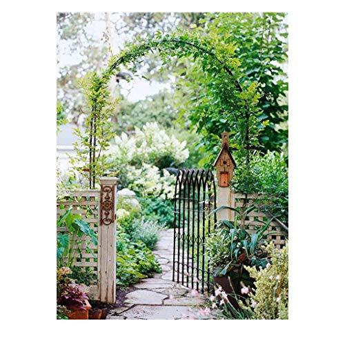(YANFEI Flower Stand Outdoor Balcony Wall Wrought Iron Leisure Lightweight Metal Arch Wedding Garden 3 Forms (Color : Bronze, Size : 16mm))