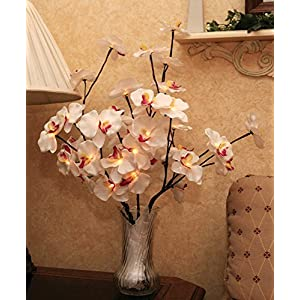 BANBERRY DESIGNS LED Lighted Orchid Flowers Bouquet Artificial - A/C powered - 40 Inch High 21