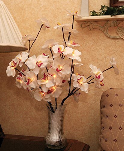 Lighted Bouquet (LED Lighted Orchid Flowers Bouquet Artificial - A/C powered - 40 Inch)