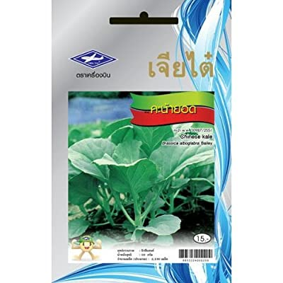 Chinese Kale (2190seeds) Seeds - 1 Package From Chia Tai, Thailand