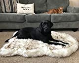 Cheap PupRug Faux Fur Memory Foam Orthopedic Dog Bed (Giant – 60″ L x 35″ W, White Curve)