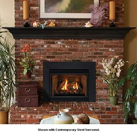 Amazon.com: Direct Vent Fireplace Insert DV35IN33LN - Natural Gas ...