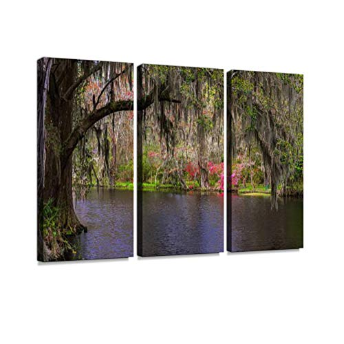 (Lush South Carolina Swamp Garden Print On Canvas Wall Artwork Modern Photography Home Decor Unique Pattern Stretched and Framed 3 Piece)