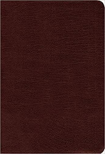 Buy Amplified Holy Bible, Large Print, Bonded Leather