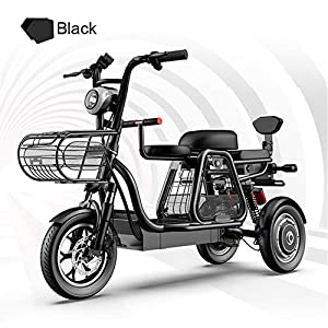 LILIJIA Portable Magnesium Alloy All Terrain Folding Electric Bikes for Adult with 500W Motor,48V/11Ah High Capacity Lithium Battery,Suitable for Commuting and Leisure,Black,11Ah