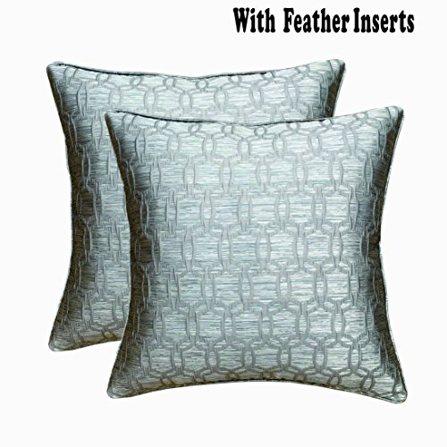 Downluxe Square Decorative Feather and Down Throw Pillows,20