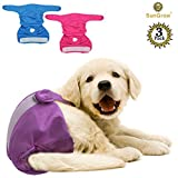 Washable Dog Diapers (3 Pcs) — Blue, Purple & Pink by Meric – Reusable, Leak-free, Super-absorbent Dog Diapers – For Female/Male Dogs – Soft Fabric – Elastic Waist – Easy to Use Touch Fastener For Sale