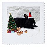 3dRose Sandy Mertens Christmas Animals - Santa Hat on Black Rabbit, Small Christmas Tree and Presents Image - 14x14 inch quilt square (qs_269552_5)
