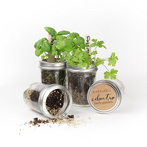 Makerskit Mason Herb Garden Gift Set, Basil/Cilantro/Mint/Parsley
