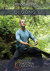Introduction to Qigong Exercise for Beginners with Lee Holden DVD (YMAA) **ALL HD 2017** BESTSELLER by YMAA