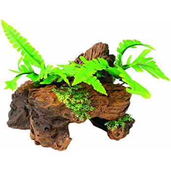 Amazon Com Marina Naturals Malaysian Driftwood With