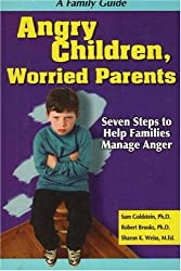 Angry Children, Worried Parents: Seven Steps to Help Families Manage Anger (Seven Steps Family Guides)