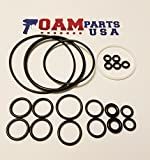 246355 Graco Fusion O-Ring Rebuild Kit for Air Purge from Foam Parts USA