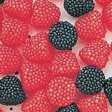 Haribo Gummi Raspberries Candy 5lb Bag