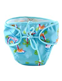 [Coconut Trees and Crab] Adjustable Infant Swim Diaper with Ties, Size Medium