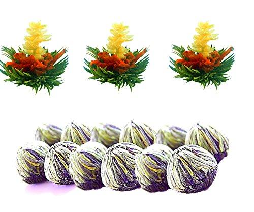 Tea Beyond FLS-3SET-BLF2100-L 12-Pack Exclusive Fab Jasmine Flowering Blooms (Exclusive Flower)