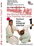 An Introduction to Minimal Motion INVISIBLE AIKI Set by Shihan Tony Annesi