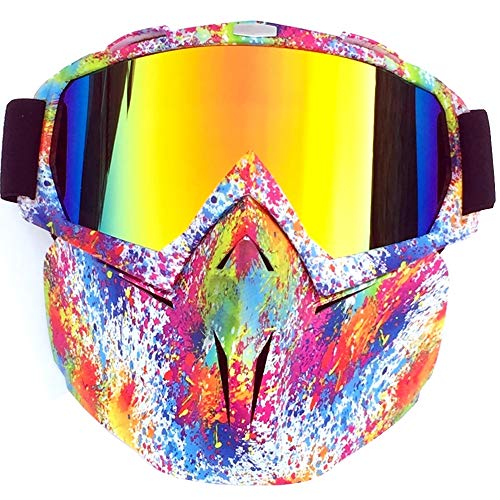 BMHFF Motorcycle Goggles Mask Detachable Anti-Fog Windproof Ski