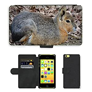 Super Stella Cell Phone Card Slot PU Leather Wallet Case // M00145006 Patagonian Hare Mara Animal // Apple iPhone 5C