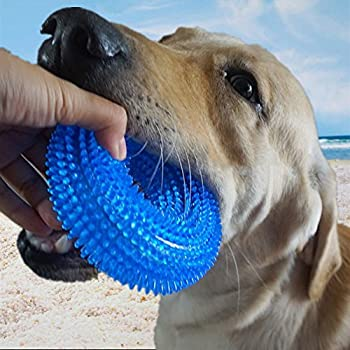Pet Supplies : Comtim Durable Dog Chew Toys Dog Chew Toys