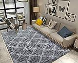 Wondo Luxury Velvet Shag Area Rug Modern Fluffy Fur Rugs,Premium Geometric Moroccan Floor Rugs for Bedroom Living Room Girls Indoor Soft Kids Carpet 4' x 6' Gray 5H