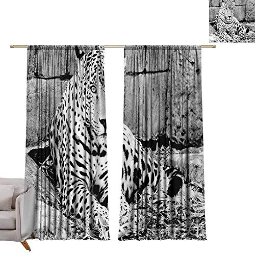 DUCKIL Simple Curtain Black and White Jaguar Wild Big Cats Theme Feline with Dots Body Fur Jungle Tiger Leopard Thermal Insulated Block Out Sunlight Shade W84 xL108 Black White