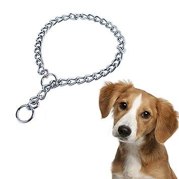 ALiYangYang Collar de Perro de Acero Inoxidable para ...