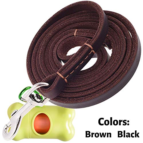 ADITYNA - Leather Dog Leash 6 Foot x 1/2 inch - Strong and Soft Leather Leash for Small or Medium Dogs - Heavy Duty Training Leash (Brown) ()