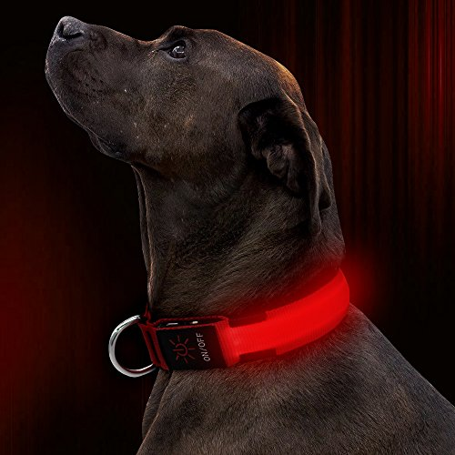 Illumifun LED Dog Collar, USB Rechargeable Glowing Safety Pet Collar, Adjustable Nylon Webbing Light Up Dog Collars Make Your Dogs Safe & Seen at Night(Red, Large)