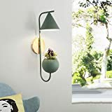 Wall Lamp Creative Flower Living Room Simple Modern Plant Living Room Bedroom Study White/Gray / Green -5w LED Warm Light (Send Simulation Melon Vine)