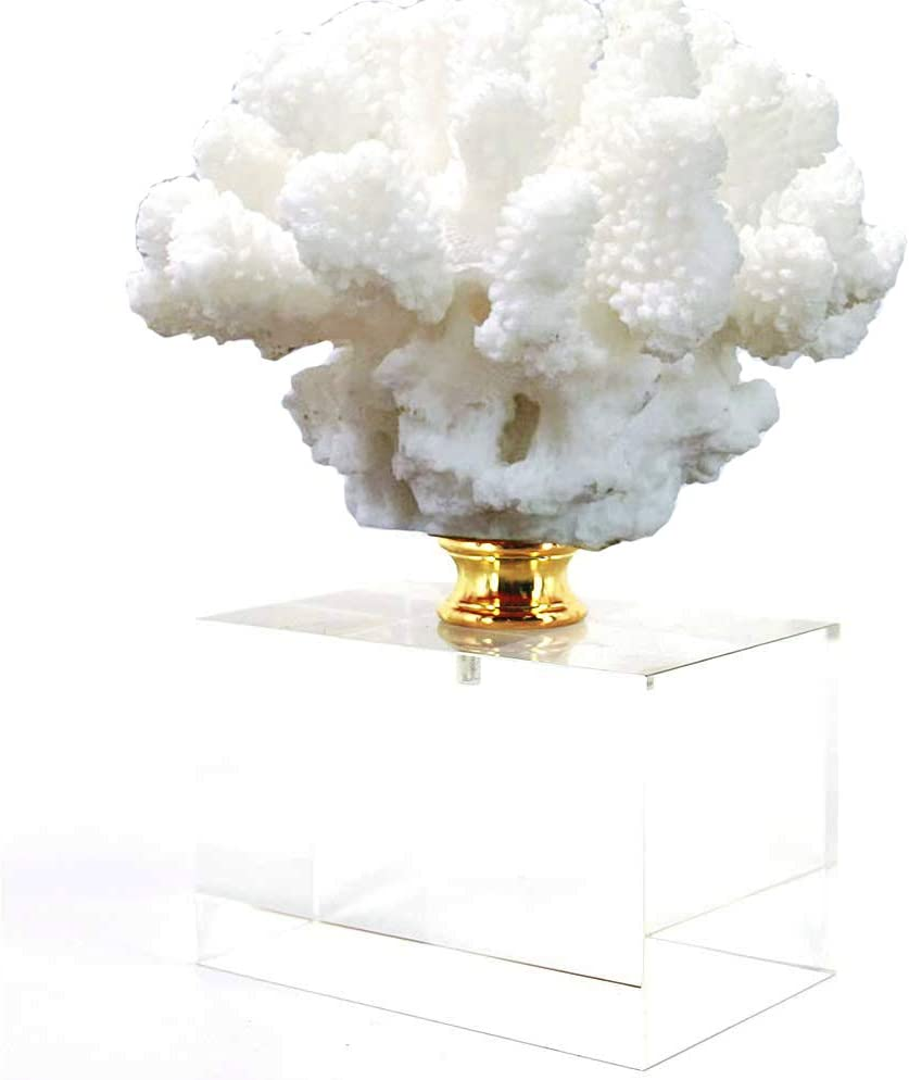 HENGYUTOYMASK Coral Sculpture on Crystal Stand Figurine Ornament, 8.3 inch, Natural Design Sea Office Home Decor White