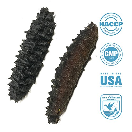 SEABENEFIT Barbed Star - Wild Caught Sea Cucumber Dried All Natural Nutritious - 8 oz. by SeaBenefit USA