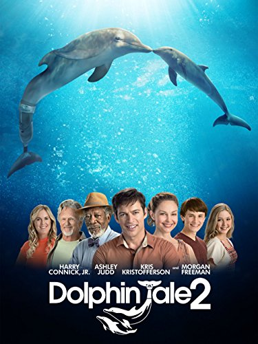 dolphin tale 2 movie - 1