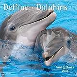 Delfine - Dolphins 2013. Trends & Classics Kalender