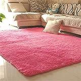 80X120cm Silky Carpet Mats Sofa Bedroom Living Room Anti-Slip Floor Carpets rose 80x120cm