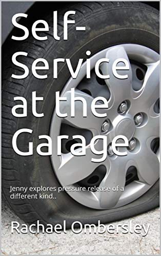 5 Different Finishes - Self-Service at the Garage: Jenny explores pressure release of a different kind.. (Finish in 5 Book 1)