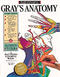 Start Exploring Grays Anatomy A Book By Freddy Stark
