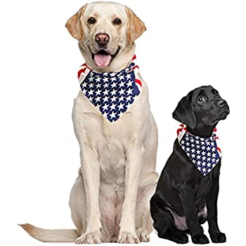 Amazon Com Bandana Trump For Medium To Large Dogs Red