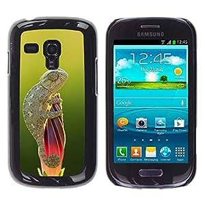 FlareStar Colour Printing Cute Lizard Chameleon Green Nature cáscara Funda Case Caso de plástico para Samsung Galaxy S3 III MINI (NOT FOR S3!!!) / i8190 / i8190N