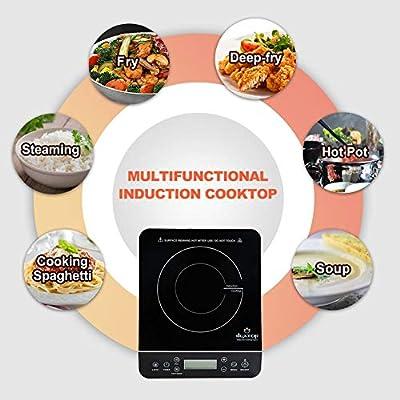 Amazon.com: Duxtop Portable Induction Cooktop, Countertop ...