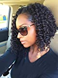 MsGem Brazilian Virgin Hair Deep Curly Wave Bob Wig 100% Unprocessed Human Hair Lace Wigs For Black Women 12 inch