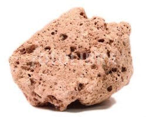 Pumice Volcanic Rock 1-2 Inch w Info Card