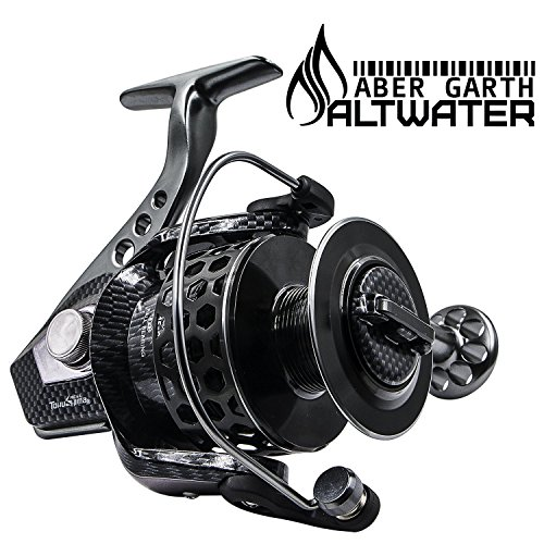 Casting Rods Kayak (Spinning Fishing Reels for Inshore Beach Surf Casting Fishing Big Offshore Salmon Boat Kayak Fishing and Freshwater Bottom Panfish Fishing Rod and Reel Combo Large Heavy Duty Surf Reel 2000)