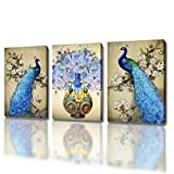 DXYJUYI Canvas Prints Wall Art Peacock Feathers Painting Bird Plume Modern Art Living Room Decoration Ready to Hang Set of 3 (16X20inchX3p, 2)
