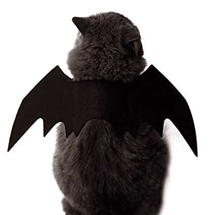 Amazon.com : URlighting Pet Bat Wings Halloween Costume, Cat Dog Cool Bat Wings with 2 Pet Collar Bells, Pet Festival Fancy Dress up for Puppy and Kitten ...