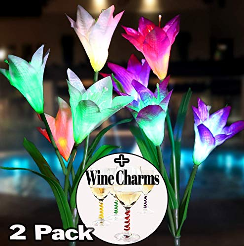 Garden Solar Flower Lights Outdoor [2] Pack + Bonus Gift, a Set of [4] Wine Charms | Great for Gifts, Balcony Decor, Patio, Solar Yard Decorations, Decorative Yard Art | LED Color Changing Lights !